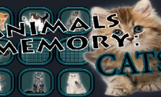 Animals Memory: Cats İndir Yükle