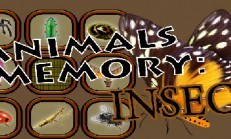 Animals Memory: Insect İndir Yükle