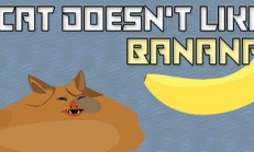 Cat doesn't like banana İndir Yükle