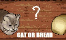 Cat or Bread? İndir Yükle