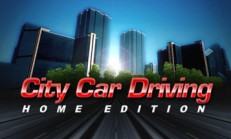 City Car Driving İndir Yükle