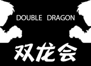 Double Dragon – 双龙会 Serisi İndir Yükle