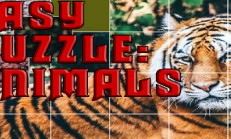 Easy puzzle: Animals İndir Yükle