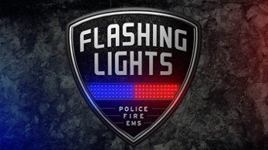 Flashing Lights – Police, Firefighting, Emergency Services Simulator (警情,消防,急救) İndir Yükle
