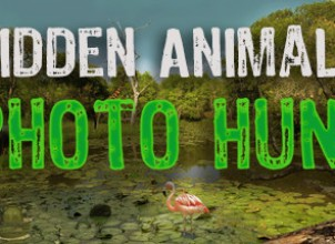Hidden Animals : Photo Hunt. Seek and Find Game İndir Yükle