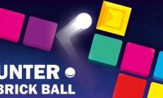 HUNTER BRICK BALL İndir Yükle