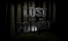 Lost in a Forest İndir Yükle